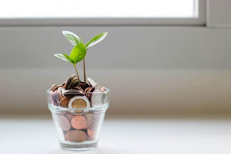 13 Roth IRA Rules You Should Know in 2020